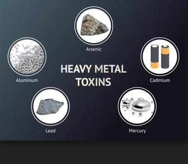 bahaya logam berat